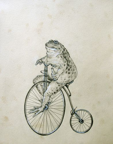 toad on high wheel